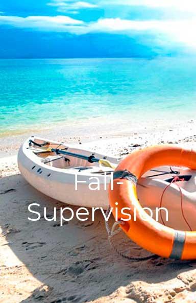 Fall-Supervision und Projekt-Supervision Anja Koop